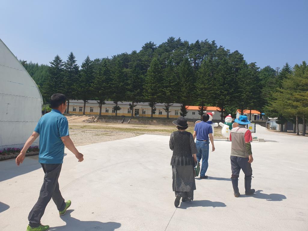 꽃으로 힐링하며 이야기가 형성되는 마을 만들기-강릉 명마을(06.22)